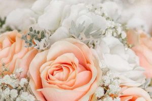 Close up of bouquet with peach and white roses and babies breath flowers.